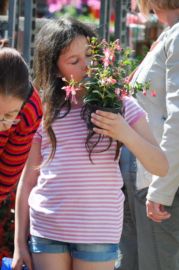 marche-aux-fleurs-0537